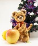 Tiger mit einem Apfel unter einem Pelzbaum Lizenzfreie Stockfotos