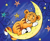 Tiger on the moon Royalty Free Stock Photos