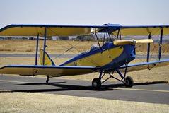 Tiger Moth royalty free stock image