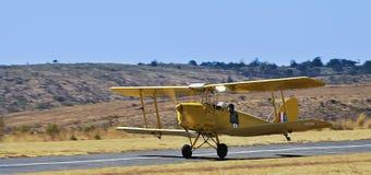 Tiger Moth - All Yellow Stock Photos