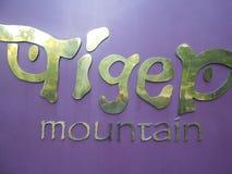 Tiger Mountain Royaltyfri Bild