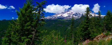 Tiger Mountains in Washington State Fotografie Stock Libere da Diritti