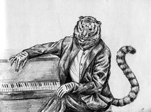 Tiger musician Royalty Free Stock Images