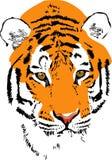 Tiger muzzle stock illustration