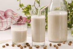 Tiger nut milk. Horchata de chufa. Stock Images
