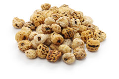 Tiger nuts, spanish chufa, superfoods Royalty Free Stock Images
