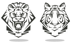 Tiger och lejon Arkivfoton