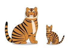 Tiger- och tigerkatt Royaltyfri Foto