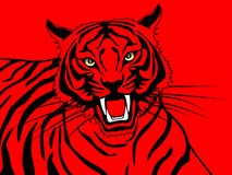 Tiger på röd bakgrund vektor illustrationer