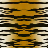 Tiger pattern Royalty Free Stock Photos