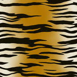 Tiger pattern Royalty Free Stock Images