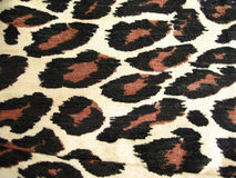 Tiger pattern for background. Brown tiger pattern for background Stock Photography
