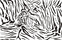Tiger pattern background Stock Image