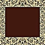 Tiger Pattern Frame Royaltyfri Bild