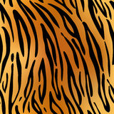 Tiger. Pattern texture repeating seamless. Stock Images