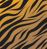 Tiger pattern vector background. Illustration Royalty Free Stock Photos