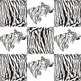 Tiger patterns for textiles and wallpaper Royalty Free Stock Photography