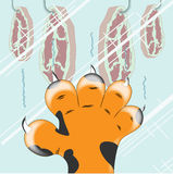 Tiger paw. On the glass. Vector illustration Royalty Free Illustration