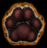 Tiger paw on black background. Painted tiger foot. For New Year on east calendar Stock Image
