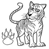 Tiger with paw print Coloring Page vector Stock Image