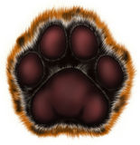 Tiger paw on white background. Painted tiger foot. For New Year on east calendar Stock Images