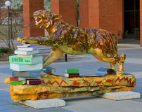 Tiger Pawing Books at The Ned R. WcWherter Library on the campus of the University of Memphis. Tiger outside The Ned R. WcWherter Library at the University of Royalty Free Stock Photography
