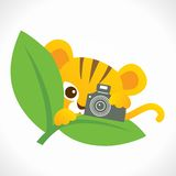 Tiger photographer. Logo (icon Royalty Free Stock Image