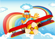 A tiger on a plane near the rainbow Stock Image