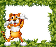 A tiger and plant frame Stock Images