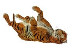 Tiger playing Royalty Free Stock Photos