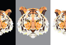 Tiger polygon. Fierce eyes, Wild Animals, instinct, the power, Fight Royalty Free Stock Images