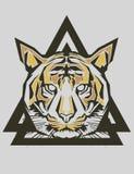 Tiger Popart Stockbild