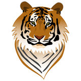 Tiger Portrait stock illustration