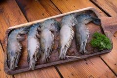 Tiger Prawn crudo fresco sul piatto di legno fotografia stock