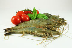 Tiger prawns. With basil and tomatoes Royalty Free Stock Photography