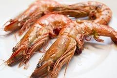 Tiger prawns. Grilled tiger prawns on a plate Stock Photo
