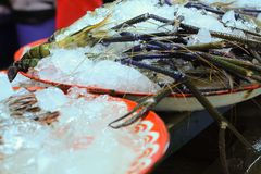 Tiger Prawns. Big fresh tiger prawns on sell in  the market Royalty Free Stock Images