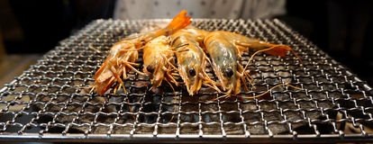 Tiger prawns cooking on the grill Stock Photos