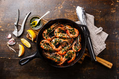 Tiger prawns roasted on frying pan Stock Photography
