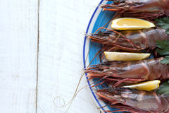 Tiger prawns/shrimp Royalty Free Stock Image