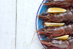Tiger prawns/shrimp Stock Images