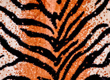 Tiger Print Background Stock Photography