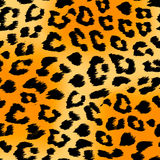 Tiger Print Background Fotos de archivo