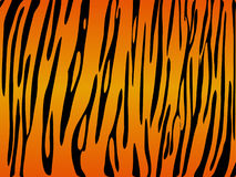 Tiger print background. Details of a black and yellowish background resembling a tiger skin Royalty Free Stock Images