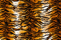 Tiger Print Background Royalty Free Stock Photos