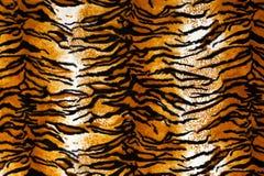 Tiger Print Background royalty free stock photos