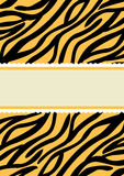 Tiger Print Banner Invitation Card Arkivfoton