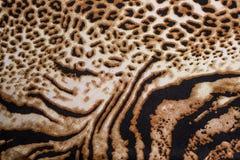 Tiger print Stock Photos