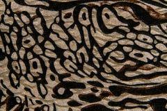 Tiger print fabric Royalty Free Stock Image