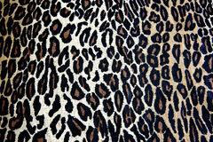 Tiger Print Royalty Free Stock Photography